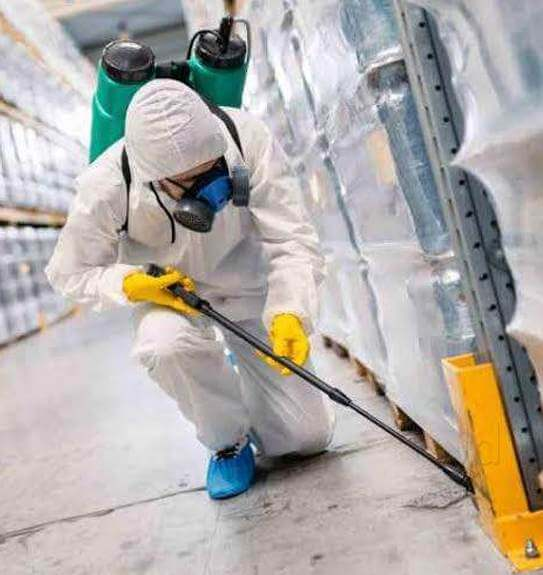 Best Pest Control Services in India